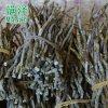 雲南鐵皮石斛幹條與風鬥的區別及食用方法/怎麼泡茶