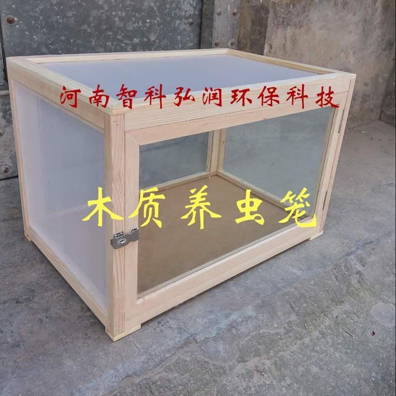 木质养虫笼 型号ZK-YCL 养虫箱