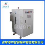 小型蒸汽发生器 电蒸汽发生器  导热油炉生物质锅炉