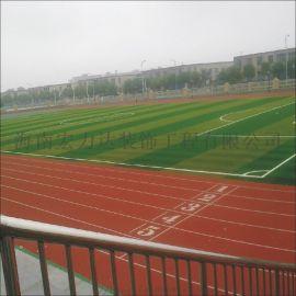 非渗水型塑胶跑道,万宁校园跑道,宏利达专注地坪