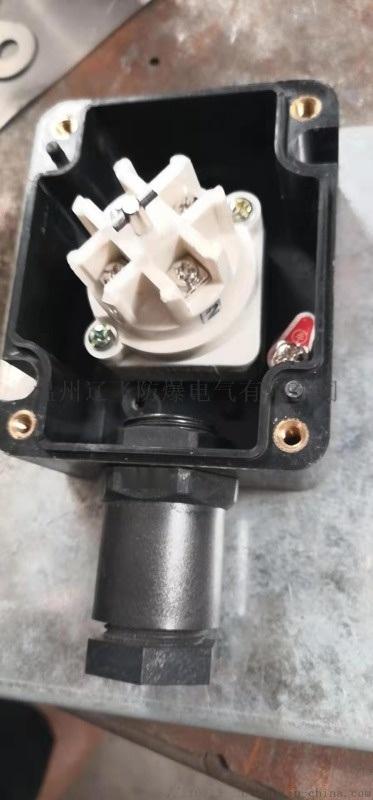 BZM8030/51-10D防爆防腐照明開關