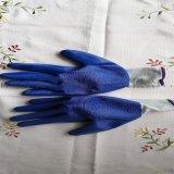 13针挂丁腈劳动保护手套