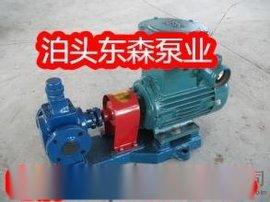 江苏常州东森圆弧齿轮油泵 输送润滑脂泵 YCB8圆弧齿轮油泵