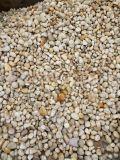 山东5-10公分天然鹅卵石供应报价