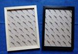 植物標本展示框 標本室展示框 相框 裝飾畫框420*297mm
