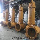 大型污水泵 污水专用提升泵 污水排污泵