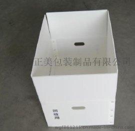 低价供应中空板白色周转箱,白色骨架箱,白色物料箱 南山