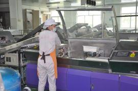 河南兴泰DFD系列智能化仿生馒头生产线之连续压片机