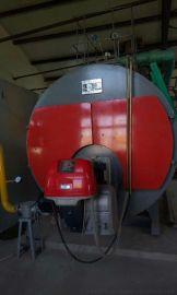 蒸汽锅炉,山东蒸汽锅炉,山东天然气蒸汽锅炉