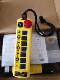 臺灣丘比特行車遙控器Q100S