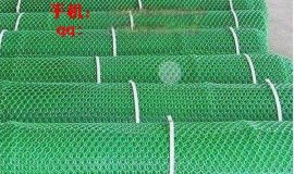 衡水塑料平网_塑料过滤网_路基网