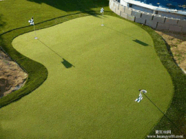 高尔夫球果岭