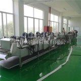 福建 自动化葡萄干清洗设备 DR清洗风干生产线