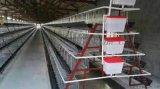 出口非洲的蛋鸡笼,电镀锌三层四门阶梯式鸡笼子