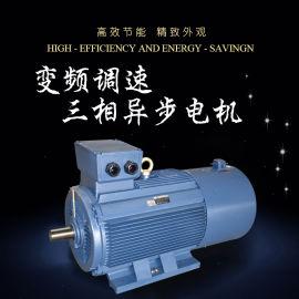 Virya品牌 Y2VP系列变频调速电动机