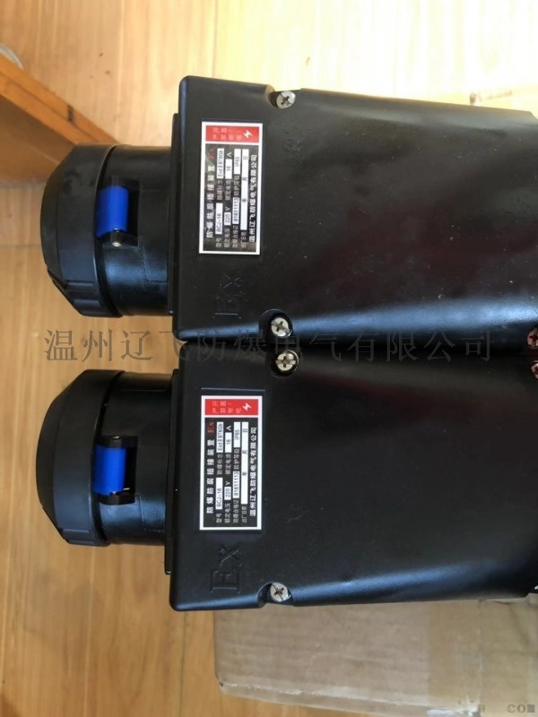 BCZ8030-G3/380V防爆插头