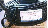 电伴热带电缆(DBR-J,DWK-PF)