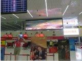 广东LED显示屏 智语光电 室内全彩P4 厂家直供