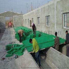 羊用塑料漏粪地板 塑料地板厂家直销 新式羊床制作