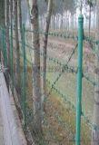 刺铁丝围栏网-清远刺铁丝围栏网-刺铁丝围栏网市场