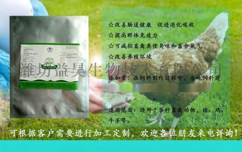 肉鸡用饲料复合菌 肉鸡饲料添加剂厂家