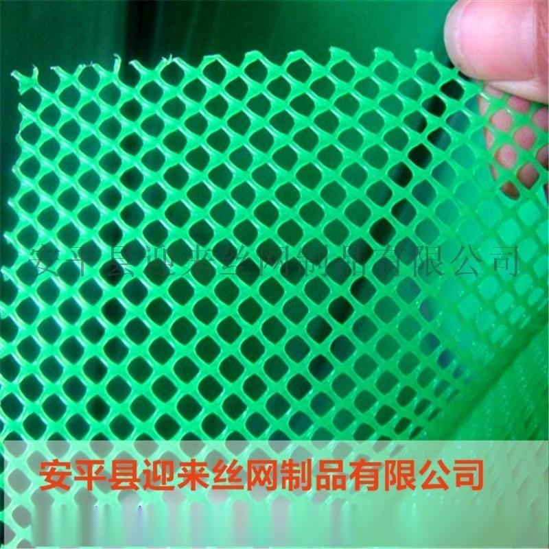 养殖塑料围栏网 鸡鸭鹅塑料养殖网 塑料防护网