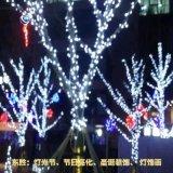 led节日亮化厂家春节节日亮化工厂圣诞节日亮化制作