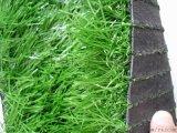 人造草坪最新批发价格运动跑道人造草坪价格