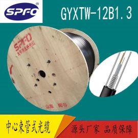 【太平洋】GYXTW-12B1 12芯單模 中心束管式室外光纜 厂家直销
