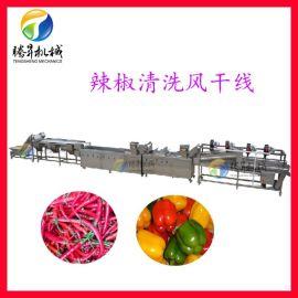 辣椒清洗机 果蔬全自动化蔬菜清洗风干流水生产线