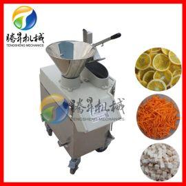 立式瓜果切菜切片机切柠檬圆片机 多功能瓜果切菜机