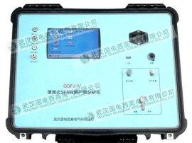 GDFJ-IV 便携式SF6气体色谱分析仪