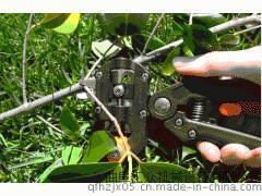 苗木嫁接机 果树嫁接机 嫁接工具 嫁接刀 嫁接剪