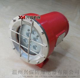 DGY18/24L(A)系列矿用隔爆型机车灯
