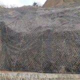 柔性护坡钢丝绳网.柔性钢丝绳防护网.钢丝绳防护网厂