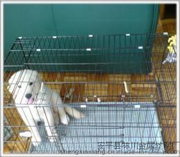 宝圣鑫600#60*40*50cm宠物笼铁丝狗笼 方管狗笼