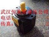 轴向柱塞泵250MCM14-1B