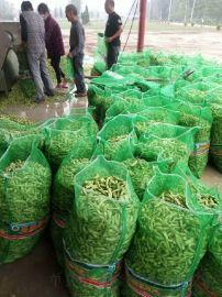 专业生产毛豆网袋 网眼袋 精品毛豆袋 透气好 承载力强