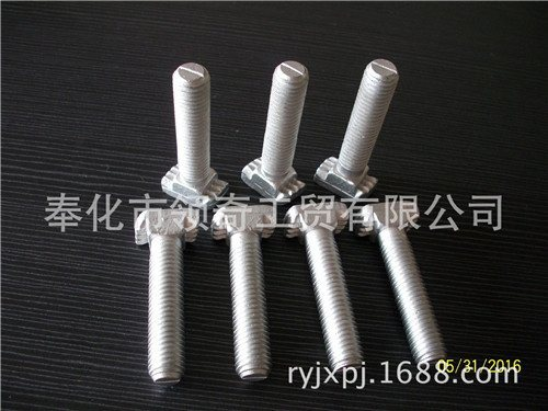 寧波領奇廠家直銷U型預埋件槽道T型螺栓30/20專用