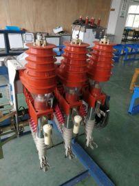 厂家供应FZN25-12高压负荷開關不锈钢型