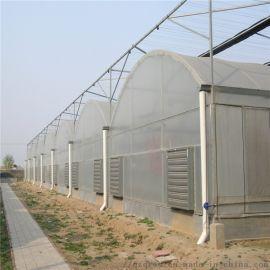 蔬菜花卉连栋薄膜温室 圆拱形简易薄膜大棚