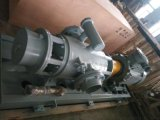 双螺杆泵,双螺杆泵厂家,专业双螺杆泵