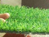 原生料高密度聚乙烯工程圍擋人造草坪草皮