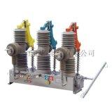 厂家直销 ZW32-24(G)户外高压真空断路器