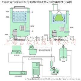50L低温冷却液循环泵-单层玻璃反应釜定做-上海吉