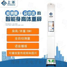 体重秤健康秤超声波全自动身高体重秤SH-500G