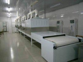 微波设备,工业微波炉,广州福滔微波果蔬脱水设备FT