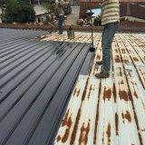 佛山各鎮街瓦頂水槽除鏽樓頂補漏鐵瓦油漆保養