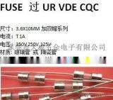 T1A玻璃管保險絲保險絲管熔斷器保護器件FUSE