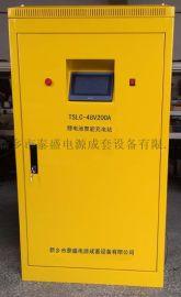 泰盛AGV-48V充电机
